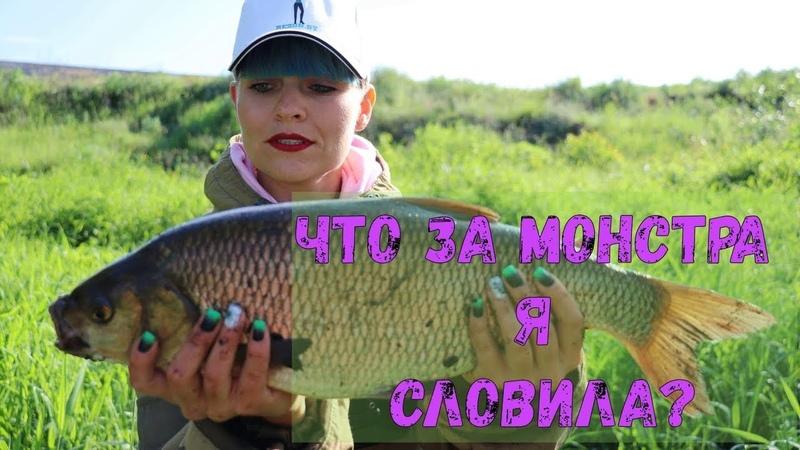 ЯЗЬ НА СПИННИНГ СЛОВИЛА РЫБУ МЕЧТЫ Рыбалка на реке 103