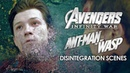 Disintegration Scenes Avengers Infinity War 2018 and Ant Man and the Wasp 2018