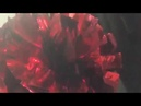 0041 Помпоны для черлидинга POMS красные