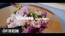 SPECIAL VIDEO IZ*ONE 아이즈원 비올레타 Violeta Flower Ver