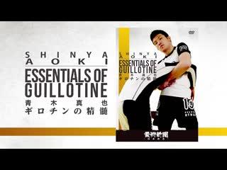 Shinya aoki - essentials of guillotine