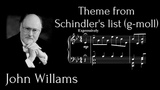 John Williams - Theme from Schindler's list (g-moll) (With MIDITrail + Sheets)