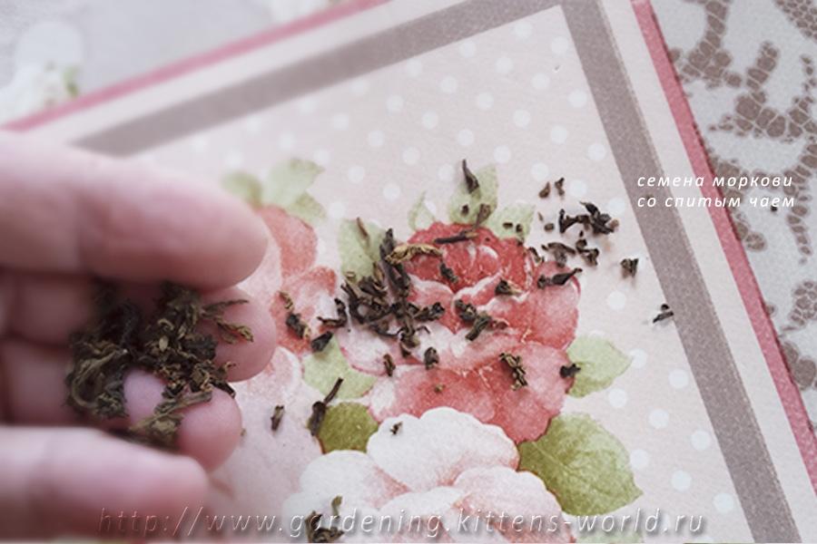 Ранневесенняя посадка овощей и зелени в теплицу - подготовка мелких семян моркови