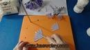 การสอนทำดอกแอฟริกันบลูลินลี่ African Blue Lily