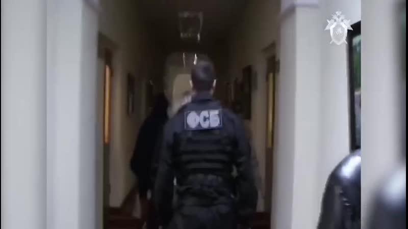 Следственный комитет выложил видео момента задержания Ирины Клементьевой