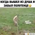 _natali_mango_ video