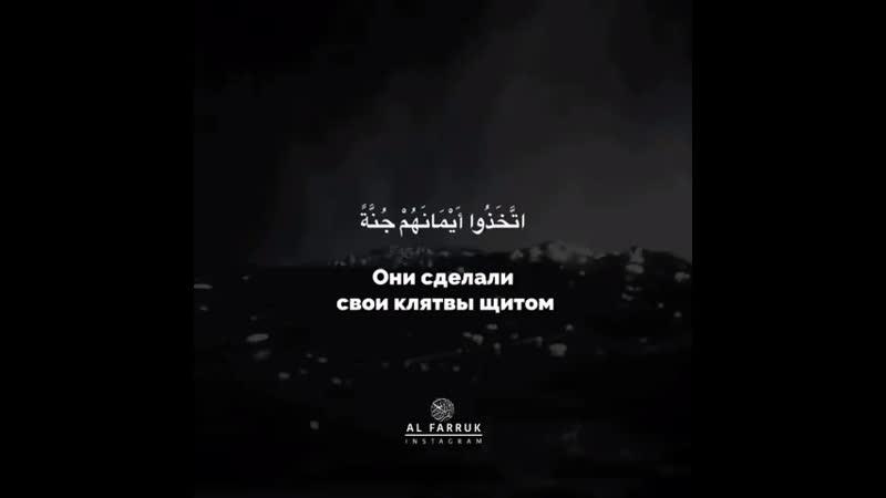 ✨Omar Hisham-Surah al-Munafiqun