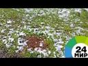 Погодный сюрприз майский снег застал жителей Иркутска врасплох МИР 24