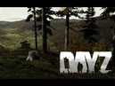 DayZ Standalone. Its good to have a friend around. ССВ ПИКЧЕРС