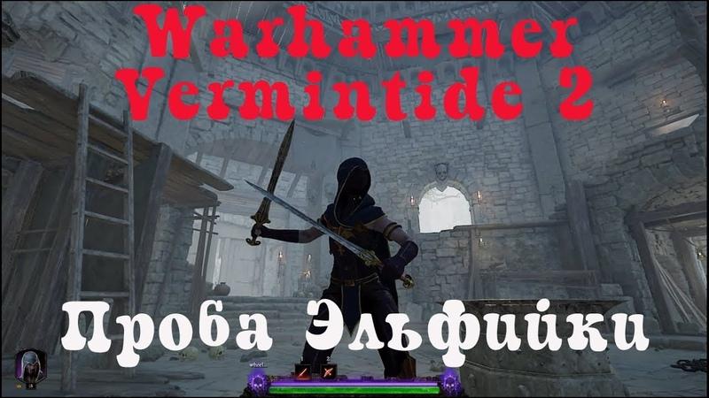 Warhammer Vermintide 2 15 Смотрим Эльфийку Ближний бой фэнтези средневековье ммо шутер