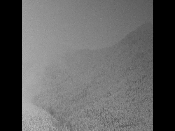 Mierr Vintlechkeit - Kald (Full Split)