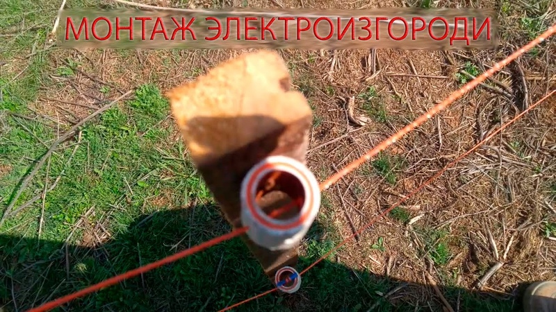 Монтаж электроизгороди запуск электропастуха