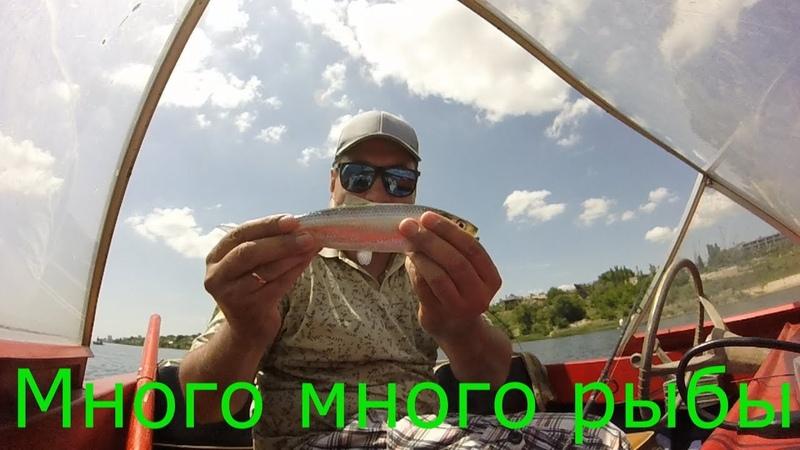 Рыбалка где много много рыбы % Super fisher % Ловим уходящего пузанка 2019