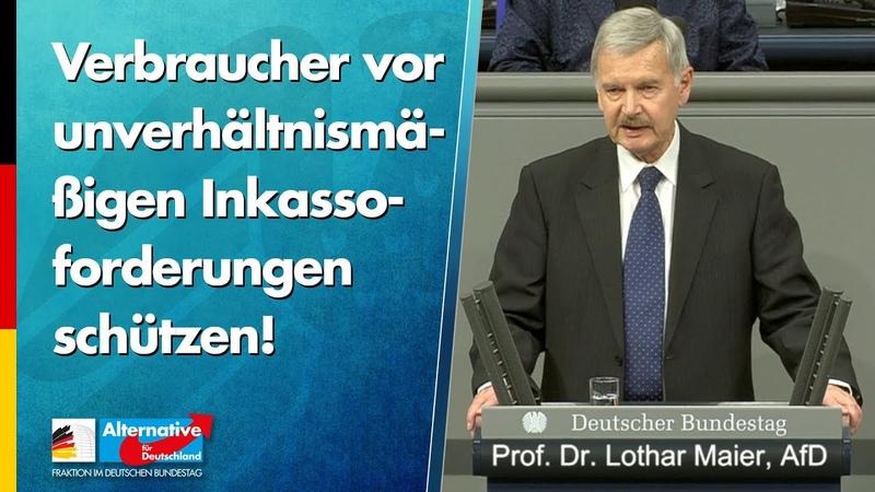 Verbraucher vor unverhältnismäßigen Inkassoforderungen schützen! - Lothar Maier - AfD-Fraktion