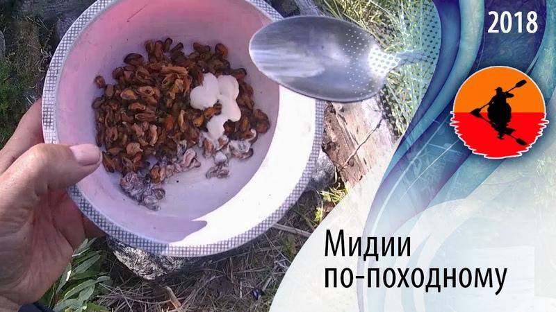 Мидии по походному Туристские блюда из беломорских мидий Приключения на байдарке