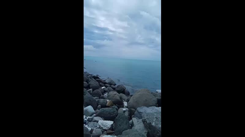 Владимир Данилов - Live