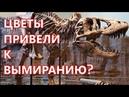 Как цветочек тираннозавра убивал Вымирание динозавров часть 2