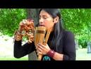 Condor Pasa Полет кондора Музыка индейцев Alpa Ecuador Spirit