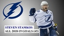 Steven Stamkos (91) All 45 Goals of the 2018-19 NHL Season