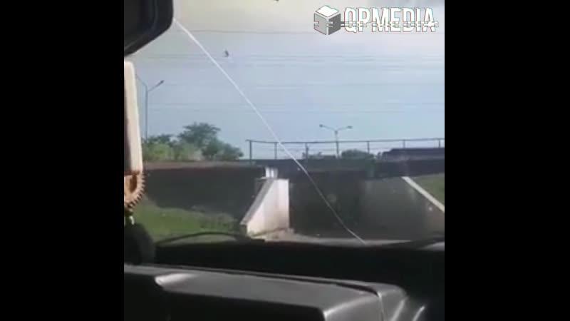 мост глупости - 2