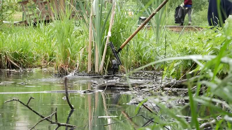 2019 06 19 Экологический субботник на речке Лобня в Букино Лобня