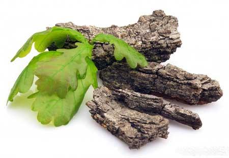Добавки из коры дуба могут быть использованы для лечения диареи