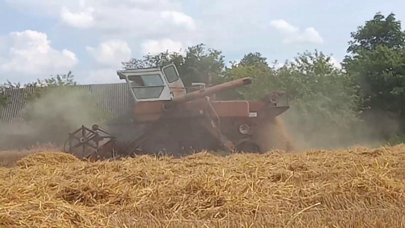 Уборка урожая 2019 Комбайн Нива СК 5М