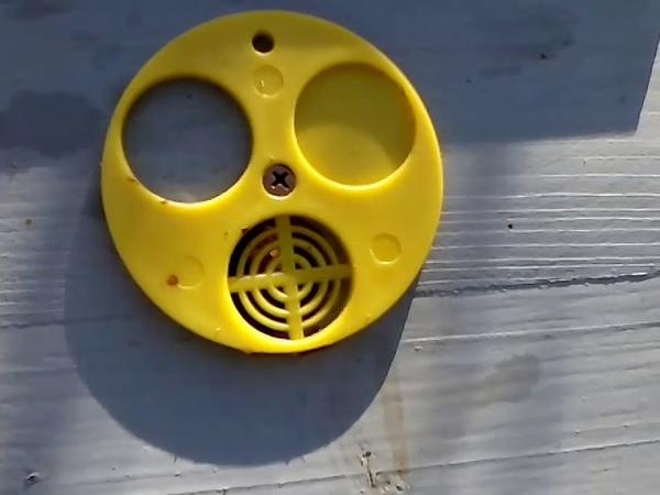 Пчеловодство azov pchel Нужен ли верхний леток в зиму