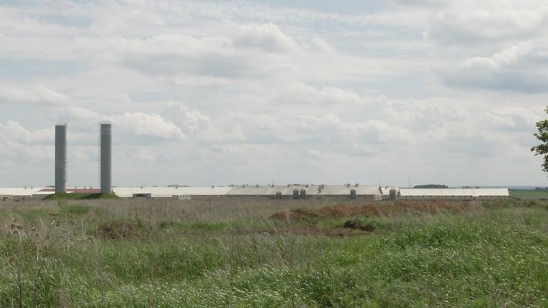 UTV Подложить свинью Жители Белебеевского района просят перенести строительство свинокомплекса