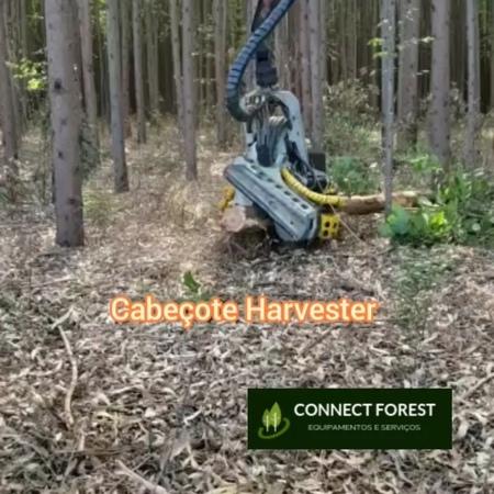 """Connect Forest on Instagram: """"Cabeçote Harvester em Ação! Converse com o time comercial para mais informações: Whatsapp: 41 9.9696-6101 E-mail: inf..."""