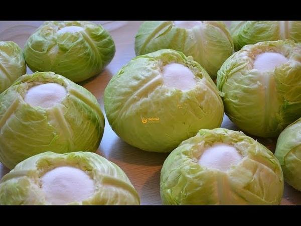 Kako se kiseli kupus zelje How to sour cabbage eng sub Sašina kuhinja