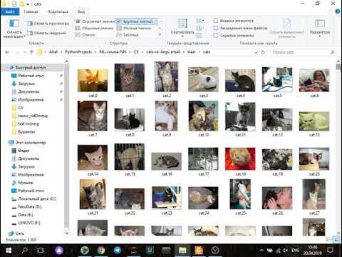 Бинарная классификация изображений набора Cats vs Dogs глубокой свёрточной сетью Аугментация данных