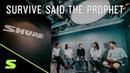Survive Said The Prophet インタビュー -GLXD16ギターベダル型デジタルワイヤレスシステム
