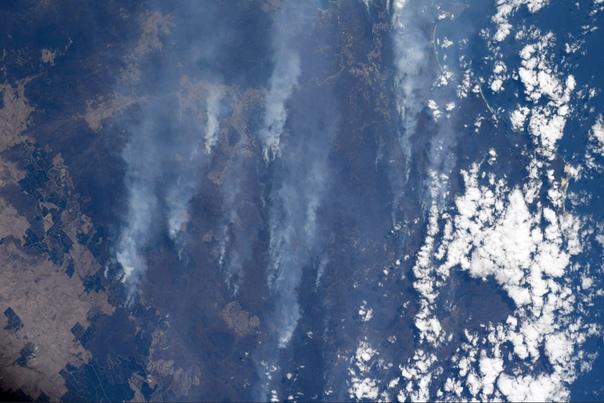 Дым от австралийских пожаров засняли из космоса