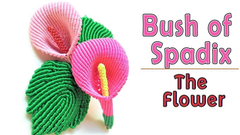 Macrame tutorial - 3D Bush of spadix part 1 - The flower - Hướng dẫn thắt dây hình bụi hoa môn