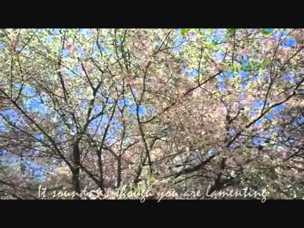 Pablo Neruda-I Like For You To Be Still (Narrator/Glenn Close)