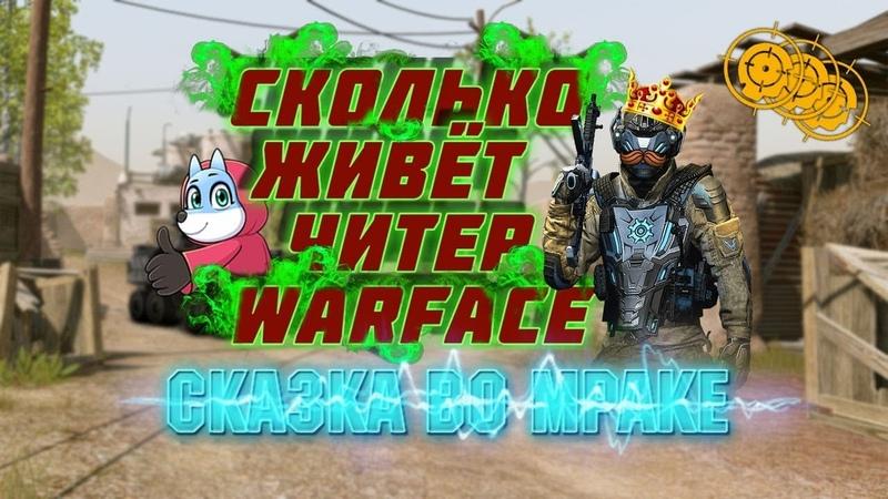 Читы в Warface Сколько живет читер в Warface вся не приукрашенная правда