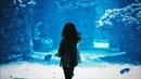 SYnus Audio Deepwater Original Mix