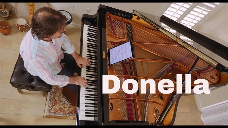 Donella Faeries David Hicken Pianist Composer