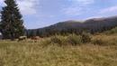 Благодать на Новоселицком перевале