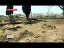 В Сочи спасают древние камни византийского храма