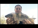 КАРАСИ и САЗАН Рыбалка на поплавочную удочку в Астрахани.