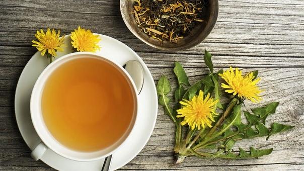 Чай из одуванчика: рецепт приготовления, полезные свойства, способ применения