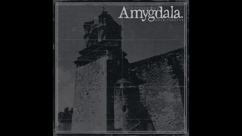 Amygdala - Our Voices Will Soar Forever 2019 (Full Album)