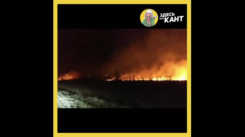 Под Калининградом сняли крупный пожар травы Здесь был Кант kanthaus
