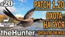 TheHunter call of the wild 20 🔫 - Патч 1.20 Охота на Гуся - Ружье Дробь - Канадская Казарка