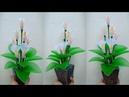 82) Ide kreatif - Bunga Calla Lily dari stoking yang cantik dan indah || nylon stocking flower