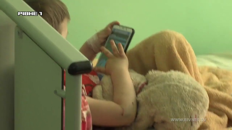 равоохоронці знайшли власника собаки, яка покусала 4-річну дитину у Рівному