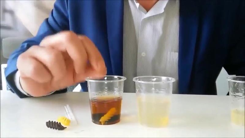 Эксперимент с АЛОЭ гелем от LR