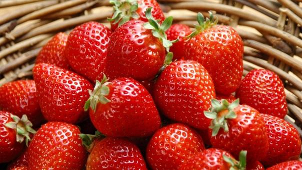 После этой подкормки клубника будет плодоносить так, что вы не будете успевает собирать ягоды Подкормка состоит из: 1 стакана просеянной золы, 2 гр. марганцовки, 2 гр. борной кислоты (порошок),